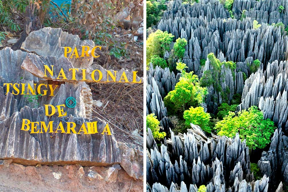 tour to madagascar